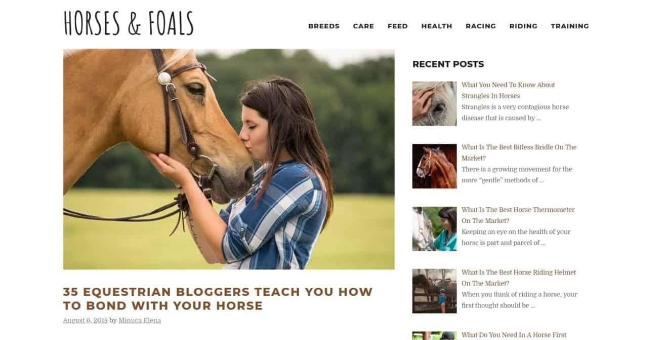 Equestrian expert roundup